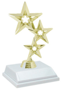 Star 6 Inch Trophy