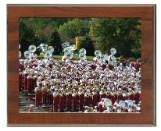 Photo/Certificate 10x12 Plaque