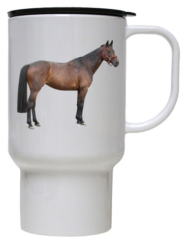 Oldenburg Polymer Plastic Travel Mug