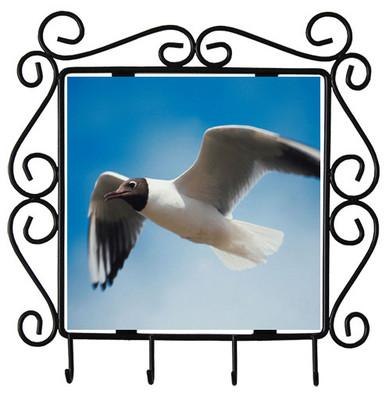 Black Headed Gull Metal Key Holder