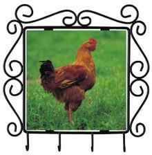 Chicken Metal Key Holder