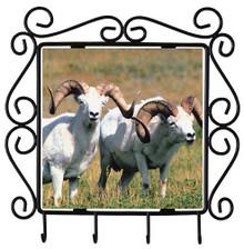 Big Horned Sheep Metal Key Holder