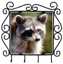 Raccoon Metal Key Holder