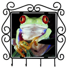 Tree Frog Metal Key Holder