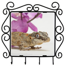 Gecko Metal Key Holder