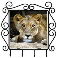 Lion Metal Key Holder