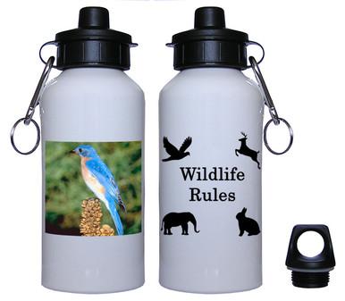 Bluebird Aluminum Water Bottle