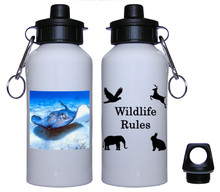 Stingray Aluminum Water Bottle