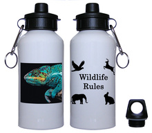 Chameleon Aluminum Water Bottle