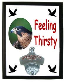 Falcon Feeling Thirsty Bottle Opener Plaque