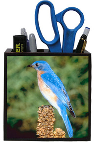 Bluebird Wooden Pencil Holder