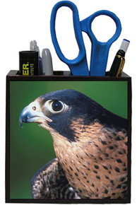 Falcon Wooden Pencil Holder