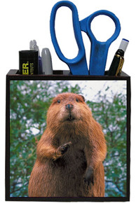 Beaver Wooden Pencil Holder