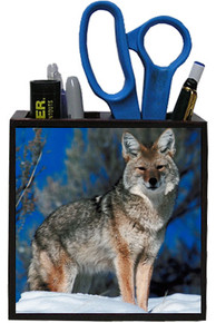 Coyote Wooden Pencil Holder