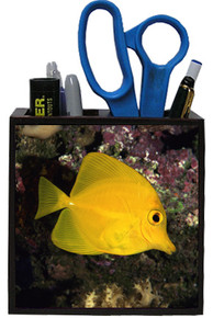 Yellow Tang Wooden Pencil Holder