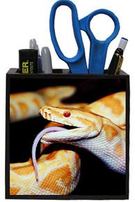 Python Snake Wooden Pencil Holder