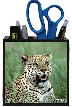Leopard Wooden Pencil Holder