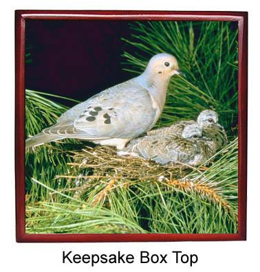 Dove Keepsake Box