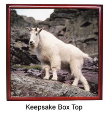 Mountain Goat Keepsake Box