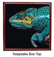 Chameleon Keepsake Box