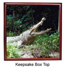 Crocodile Keepsake Box