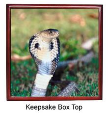 Cobra Snake Keepsake Box