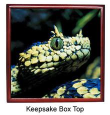 Viper Snake Keepsake Box