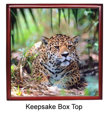 Jaguar Keepsake Box