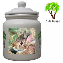 Rabbit Ceramic Color Cookie Jar