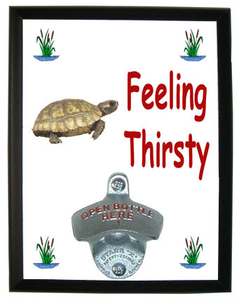 Turtle Feeling Thirsty Bottle Opener Plaque