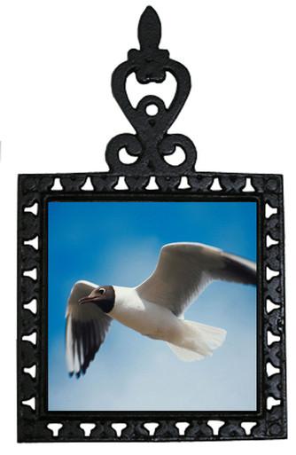 Black Headed Gull Iron Trivet