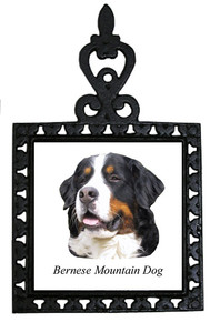 Bernese Mountain Dog Iron Trivet