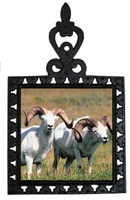 Big Horned Sheep Iron Trivet
