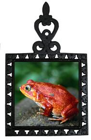 Tomato Frog Iron Trivet