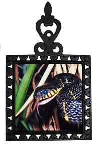 Mangrove Snake Iron Trivet