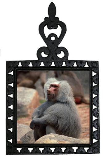 Baboon Iron Trivet