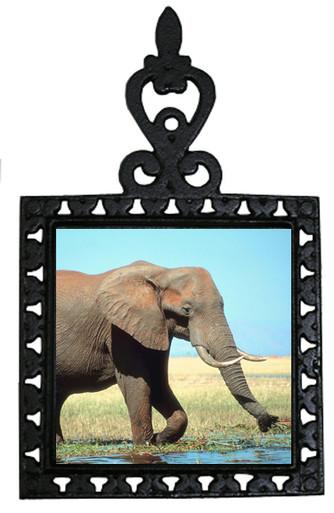 Elephant Iron Trivet