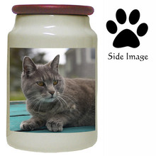 Cat Canister Jar