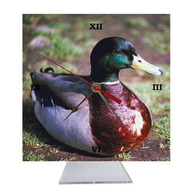 Duck Desk Clock