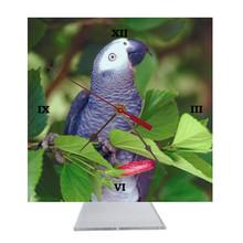 African Grey Parrot Desk Clock