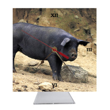 Pig Desk Clock