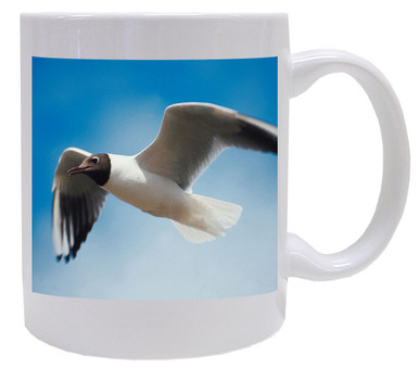 Black Headed Gull Coffee Mug