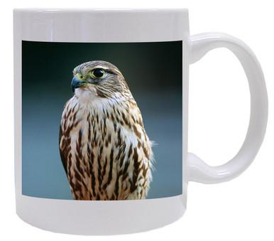 Falcon Coffee Mug