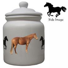Barb Ceramic Color Cookie Jar