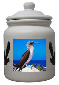 Blue Footed Booby Ceramic Color Cookie Jar