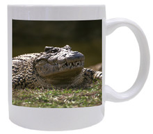 Alligator Coffee Mug