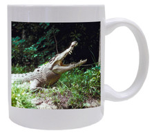 Crocodile Coffee Mug