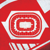 Detroit Red Wings - Joe Louis Arena City Print
