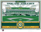 Oakland Coliseum Handmade LE Screen Print