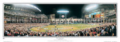 """2005 World Series"" Houston Astros Panoramic Framed Poster"